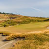 Hole #6, Chambers Bay, US Open Championship