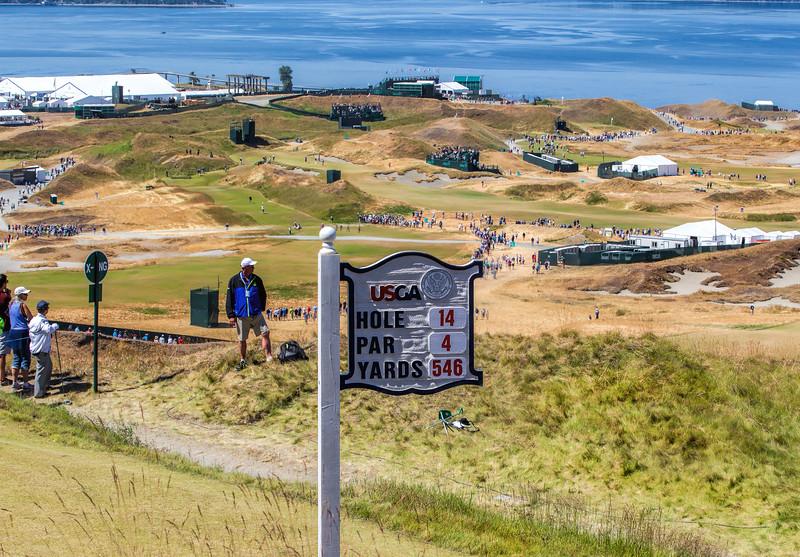 Hole #14, Chambers Bay, US Open Championship