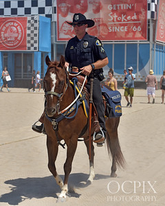 The mounted enforcement units at the 2018 US Open of Surfing