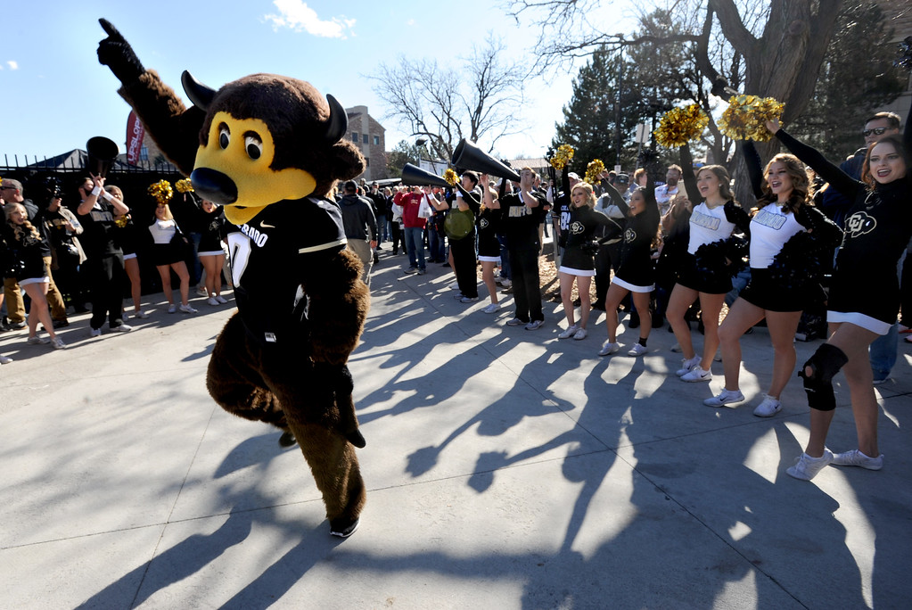 . Chip and the CU spirit squad greet the players coming off the bus before the November 11th, 2017 game in Boulder.  Cliff Grassmick / Staff Photographer/ November 11, 2017, 2017