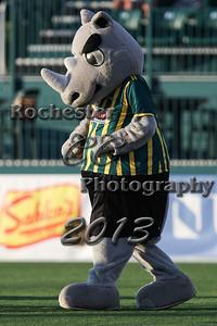 Rex Rhino