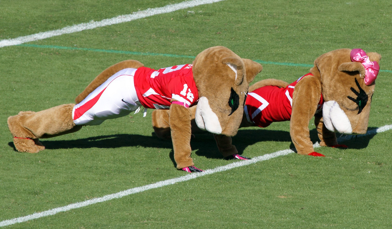 Shasta and Sasha doing celebratory pushups