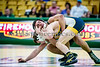 UVU Wrestling vs N Colorado -15Feb14-0020.jpg