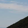 Paraglider near Gridley Top
