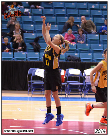 2014 Mini Basketball