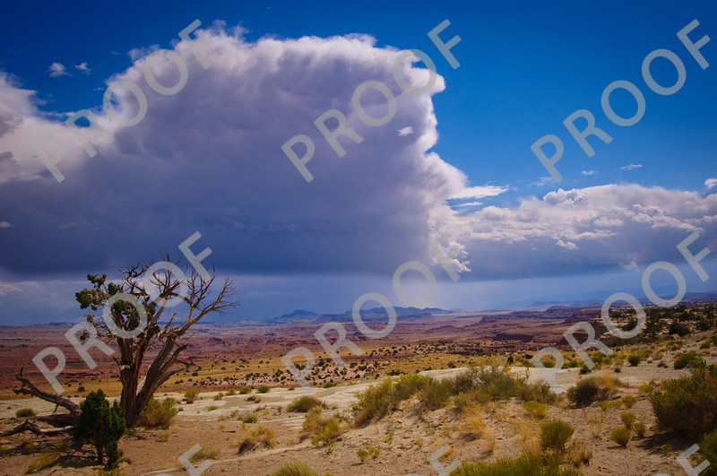 Spectacular clouds and view towards Capital Reef NP, taken from I-70 and one of the many must-visit rest stops.