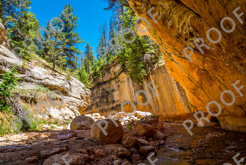 Ashdown Gorge is remote, but spectacular. It reaches 600 feet high in places and is home to Flanigan Arch.