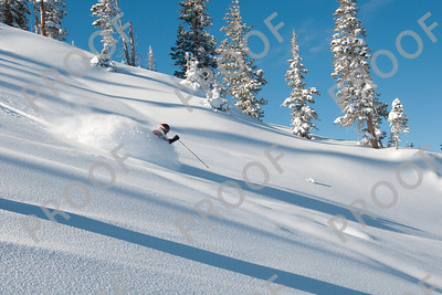 Deep soft snow and sun make for ideal turns on Giant Steps.