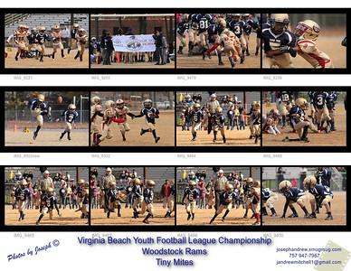 VBYFL Championship 2013