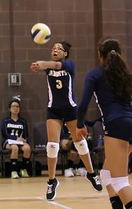 VCA Volleyball 083112-4