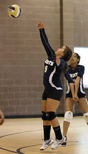 VCA Volleyball 083112-10