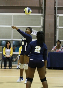 VCA Volleyball 083112-38