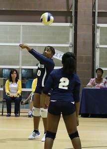 VCA Volleyball 083112-38