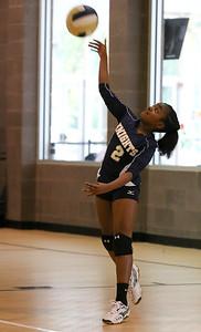 VCA Volleyball 083112-12
