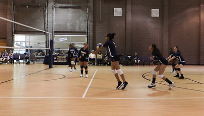 VCA Volleyball 083112-1