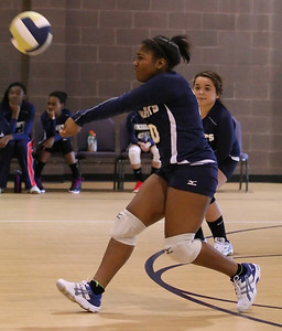 VCA Volleyball 083112-19
