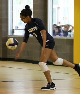 VCA Volleyball 083112-24
