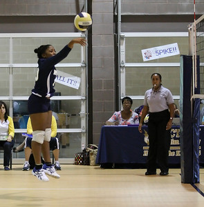 VCA Volleyball 083112-36