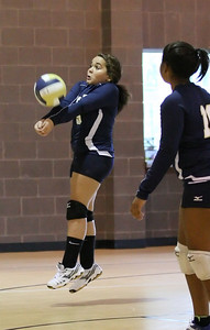 VCA Volleyball 083112-3