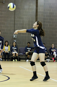 VCA Volleyball 083112-8