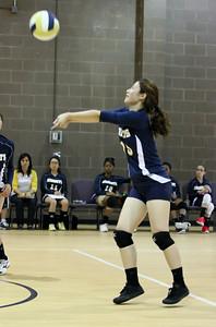 VCA Volleyball 083112-8