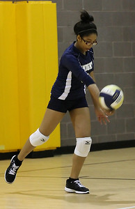 VCA Volleyball 083112-33