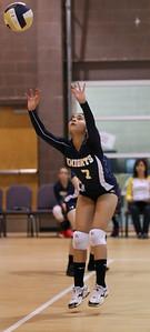 VCA Volleyball 083112-30