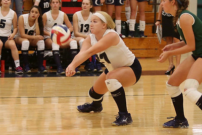 McNeil's Katt Perks digs the ball against Vista Ridge.