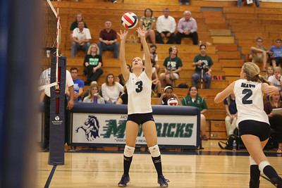 McNeil's Mallory Davidson sets the ball against Vista Ridge.