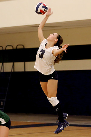McNeil's Mallory Davidson serves the ball against Vista Ridge.