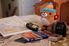 Mukmuk ponders his travel itinerary.