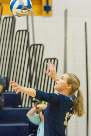 Record-Eagle/Brett A. Sommers Traverse City St. Francis' Brenna Poole serves up a shot during Tuesday's Division 3 quarterfinal volleyball match against Beal City at Cadillac High School. St. Francis won 3-1.