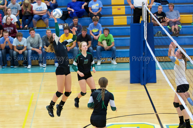 '15 Varsity Volleyball 241