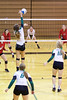'15 Cyclone Volleyball 346
