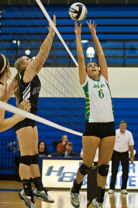 Newark Catholic High School's #6 Mia Carpenter goes up against Bishop Ready High School in their match-up in the Ohio High School Athletic Associations' 2010 Division III Central District Semifinal volleyball game held at Hilliard Bradley High School Wednesday night October 27, 2010.  (©2010 James D. DeCamp / http://www.OhioPhotojournalist.com / 614•462•8027)