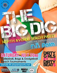 2011 The BIG DIG