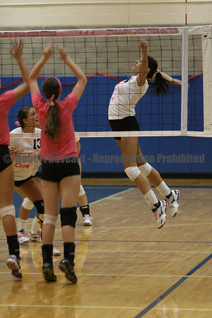 Volley for the Cure 2011