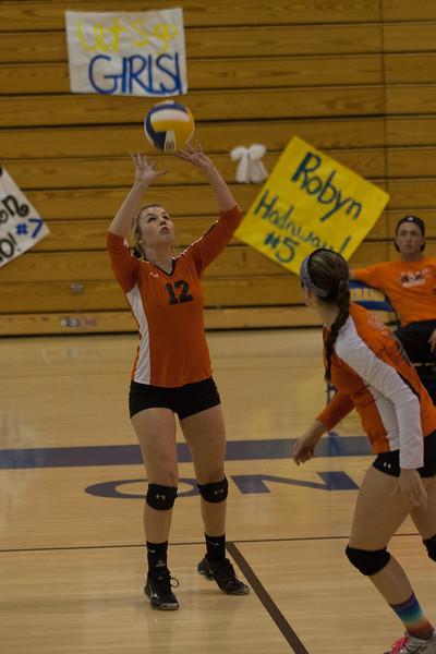 2013 Apple valley girls  varsity volleyball