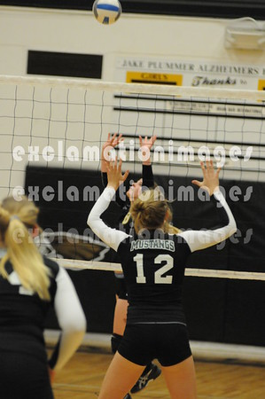 2013 Capital HS JV Volleyball add on