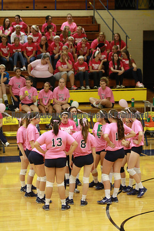 Volley for the Cure 2013