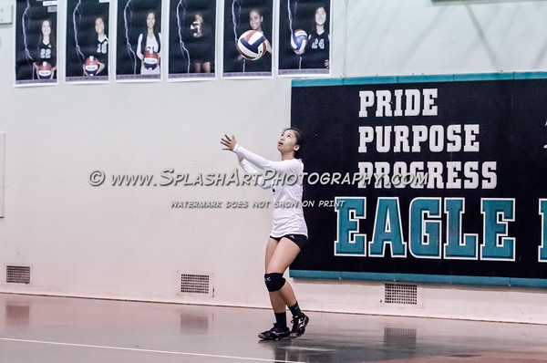 2015 Eagle Rock Volleyball vs South East