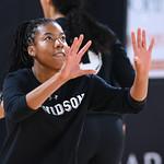 NCAA WOMENS VOLLEYBALL:  Sep 24 Saint Louis at Davidson