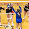 Dominican College Women's VolleyBall