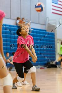 Arlington Youth Volleyball (31 May 2012)