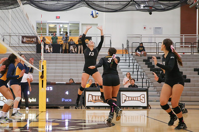 Adelphi vs Pace Womens Volleyball | Oct 10th 2017 | Credit: Chris Bergmann Photography