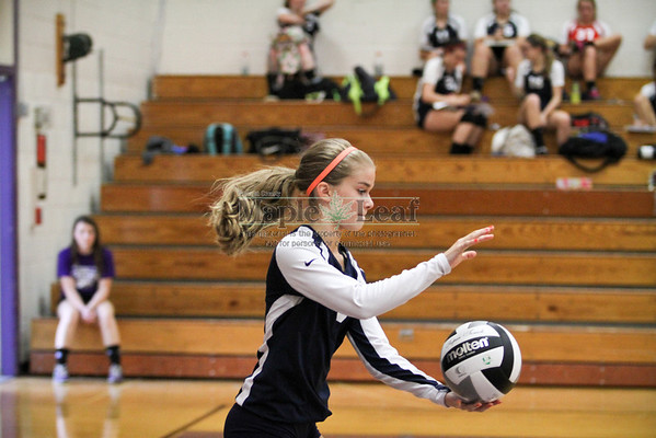 Berkshire v West G VB 2013
