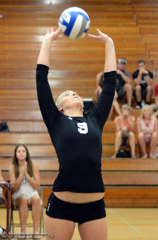 . Butte College\'s #9 Colleen Tade sets the ball against Chico State in their volleyball game at CSUC Acker Gym Saturday, August 24, 2013 in Chico, Calif.  (Jason Halley/Chico Enterprise-Record)