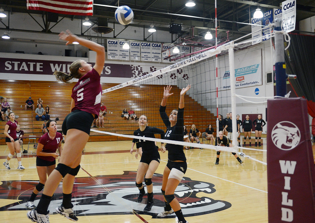 . Chico State\'s #5 Lindsay Quigley (left) goes up for a spike against Butte College\'s #11 Brooke SIlverman (center) and #12 Callie Flood (right) in their volleyball game at CSUC Acker Gym Saturday, August 24, 2013 in Chico, Calif.  (Jason Halley/Chico Enterprise-Record)