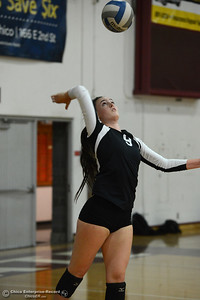 Chico State's Nikki Desrochers serves the ball in a volleyball scrimmage Saturday, Aug. 20, 2016, at Acker Gym in Chico, California. (Dan Reidel -- Enterprise-Record)