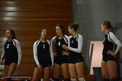 Left to right, Chico State volleyball players Olivia Mediano (2), Brooke Fogel (1), Bekah Boyle (4), Kim Wright (3) and Anna Baytosh (6) on the sidelines of a scrimmage against Butte College on Saturday, Aug. 20, 2016, at Acker Gym in Chico, California. (Dan Reidel -- Enterprise-Record)